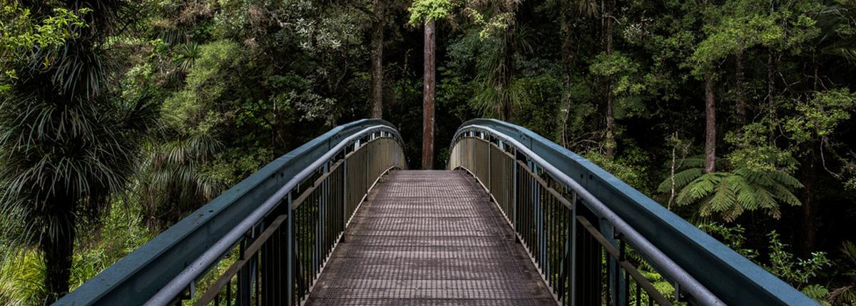 bridge-1200×429